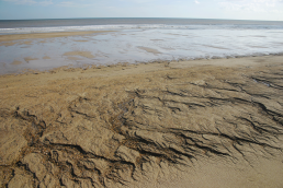 Moggs Eye beach, Lincolnshire