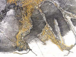 Printing in Lincoln. Untitled: black and gold image (detail)