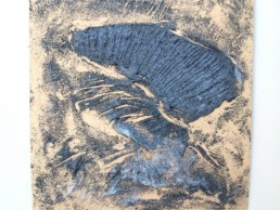 A plate for 'The Fourteen'?: collagraph plate