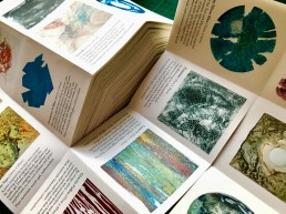 Info booklets for Printfest 2018